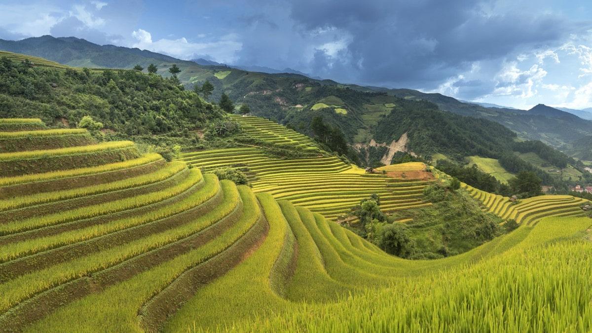 vietnam-3059666_1200-min.jpg